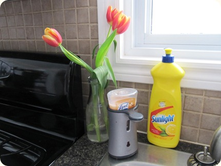 Flowers by the Sink (1)